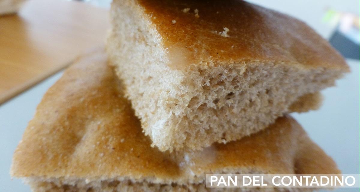 Pane del contadino Pegaso Food